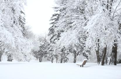 【感想・レビュー】歌・曲で振り返るファンタジー映画「アナと雪の女王」の見どころ。無料視聴方法も。